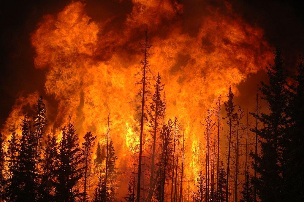 За прошлые сутки пожары на далеком Востоке охватили около 7-ми тыс. гектаров