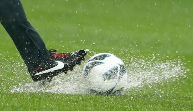 Р.Вильфанд предсказывает «футбольную» погоду вдни полуфиналов Кубка конфедераций