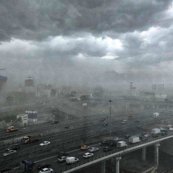 МЧС предупредило жителей Москвы о возможном усилении ветра