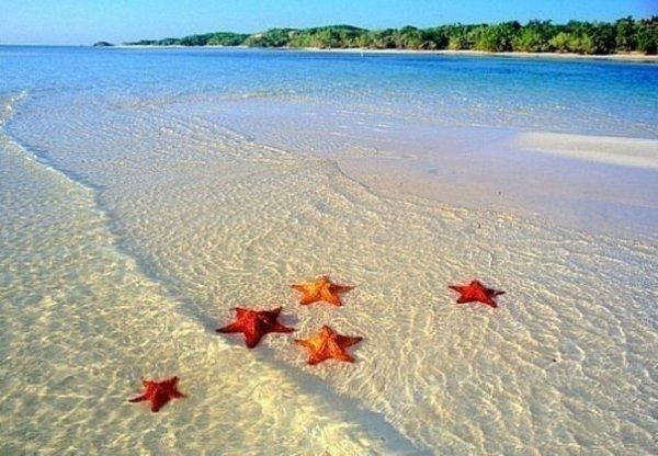 Выбираем лучший отдых на Доминикане