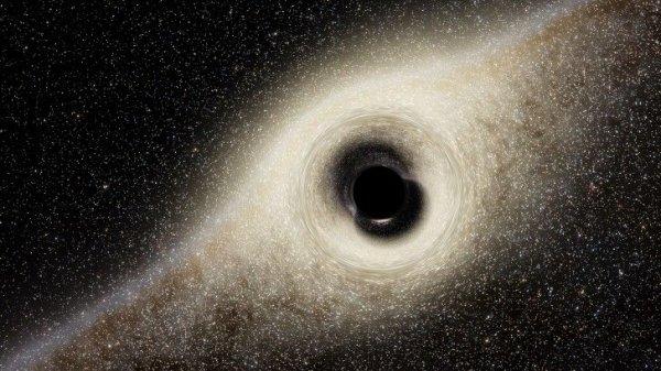 """Орбитальная обсерватория """"Спектр-РГ"""" сможет найти три миллиона черных дыр"""