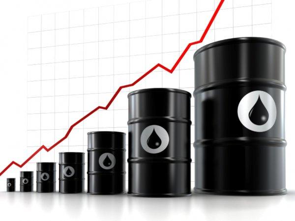 Стоимость нефти на открытии торгов 13 июня выросла