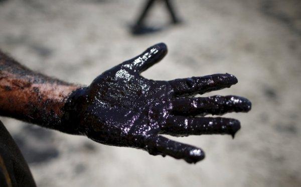 Цены на нефть вернулись к стабильному росту на ожиданиях снижения запасов в США