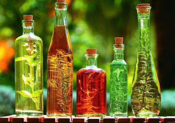 Ученые: Растительные масла могут нанести вред организму