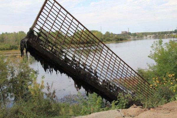 В Сибири ученые вырастили уничтожающие нефть бактерии
