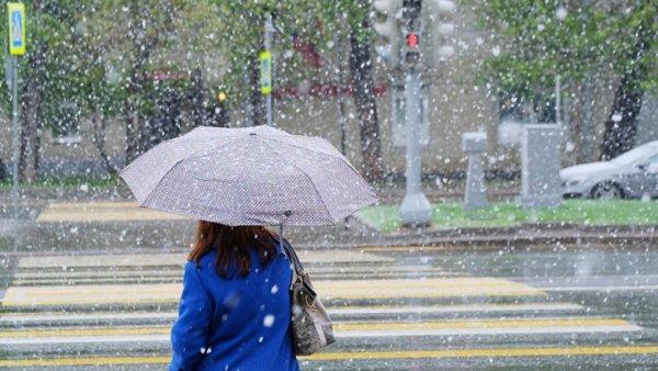 Ученые назвали причину аномально холодного лета