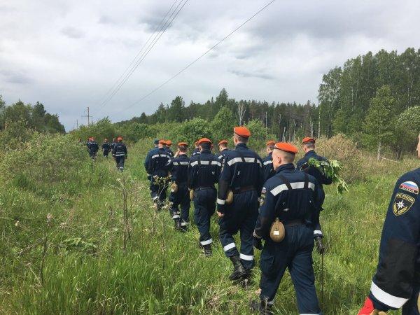 Пропавшего в Челябинской области ребёнка ищут более 700 человек