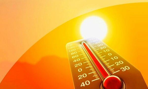 Ученые: Из-за смертельной жары к концу века погибнет три четверти жителей планеты