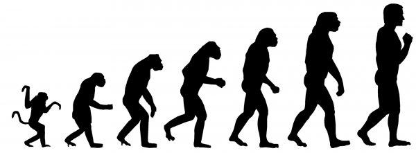 Ученые: Эволюции на самом деле не существует