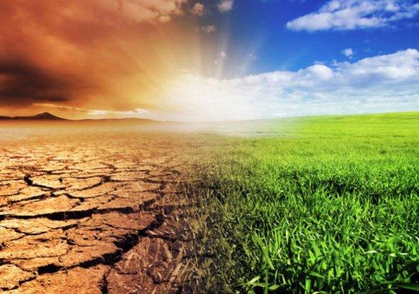 Ученые определили крайний срок предотвращения глобальной катастрофы