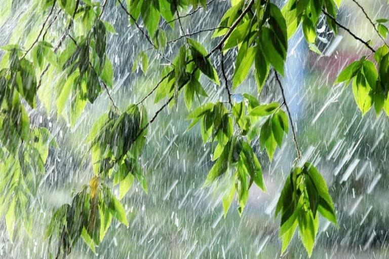 Погода в евпатории на май и температура воды