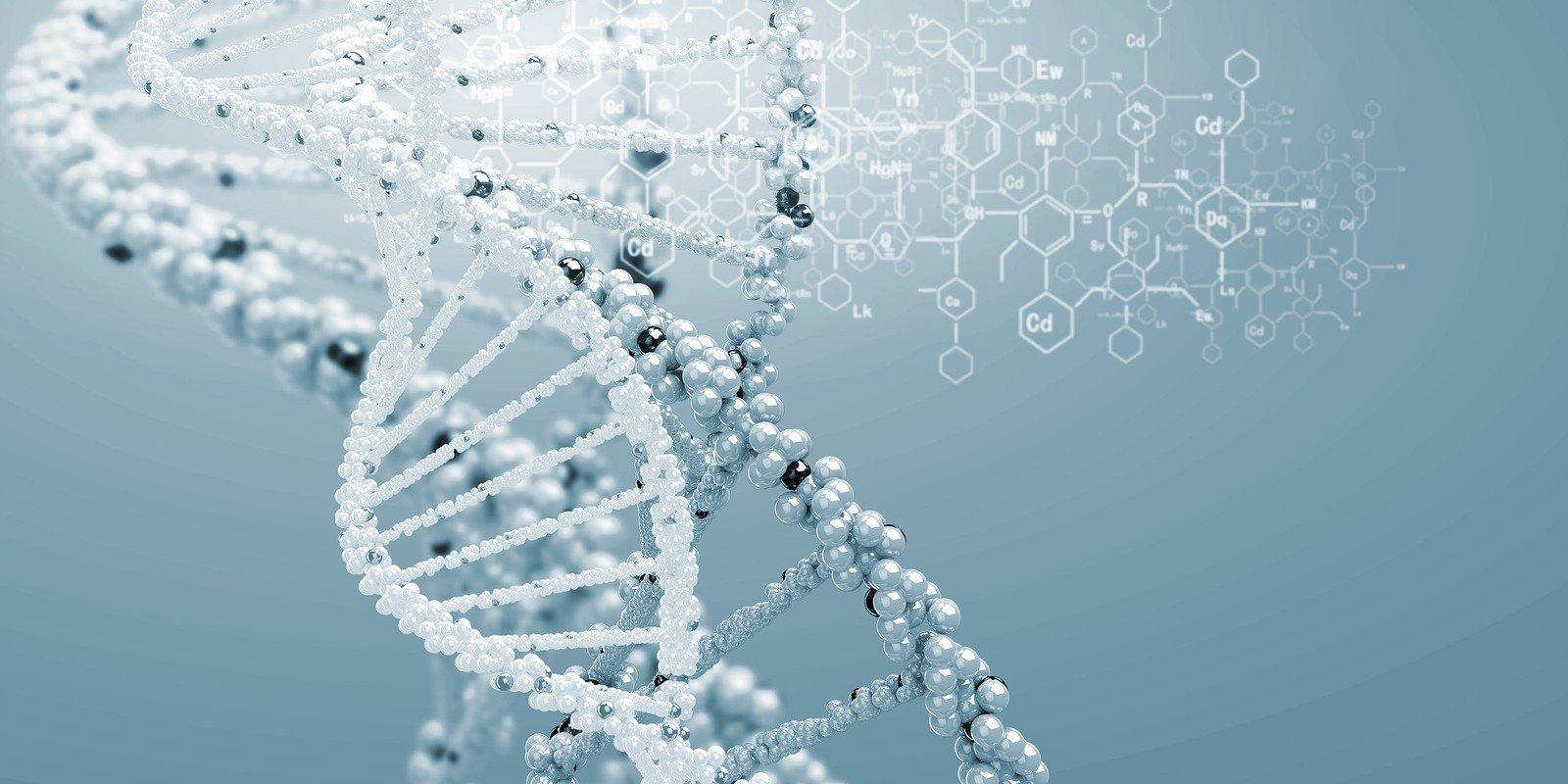 Ученые обнаружили следы еще одного вида людей вДНК неандертальцев