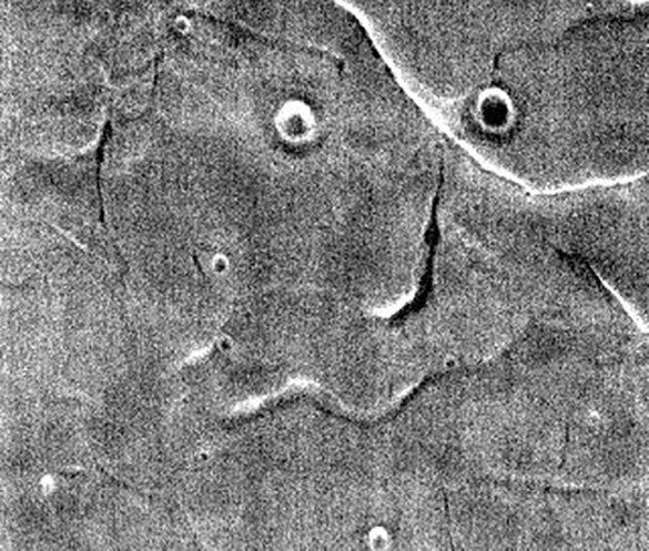 Аппарат NASA снял на фото лицо человека на Марсе