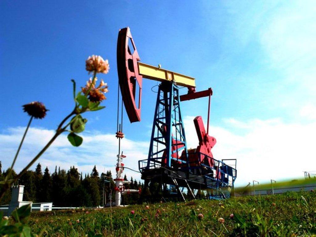 Запасы «чёрного золота» вСША уменьшились на6,3 млн баррелей