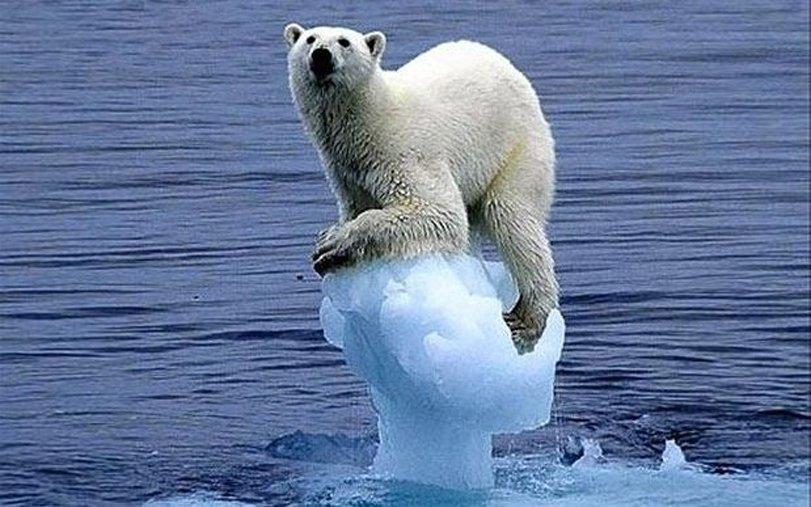 Ученые: Потепление русской Арктики «заморозило» США иКанаду