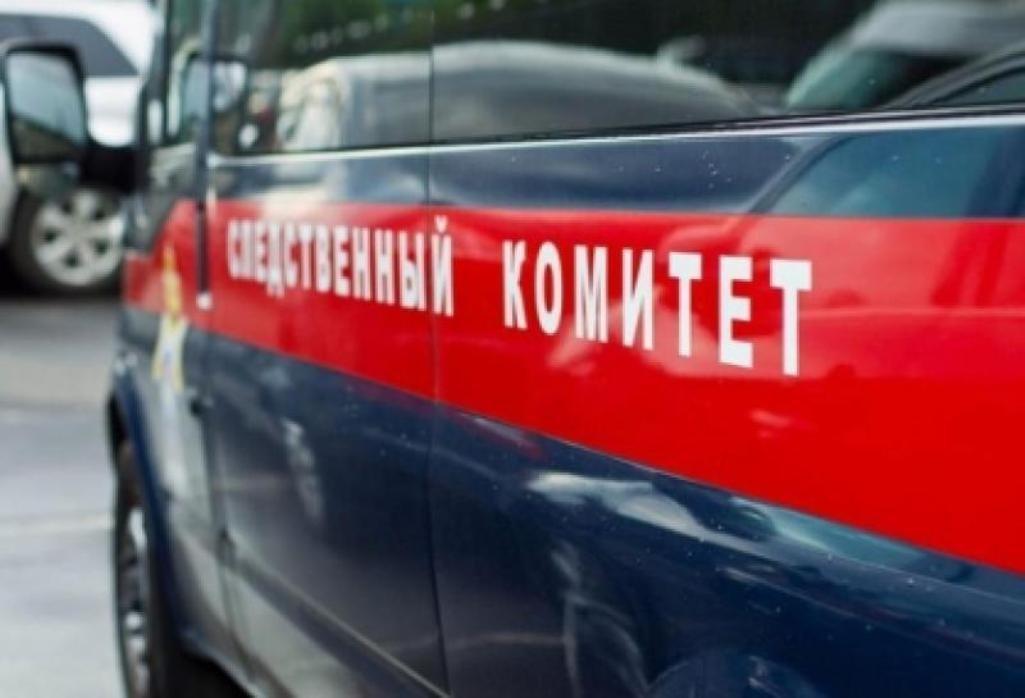 В столице России  29-летний местный гражданин  досмерти забил своего двухлетнего сына