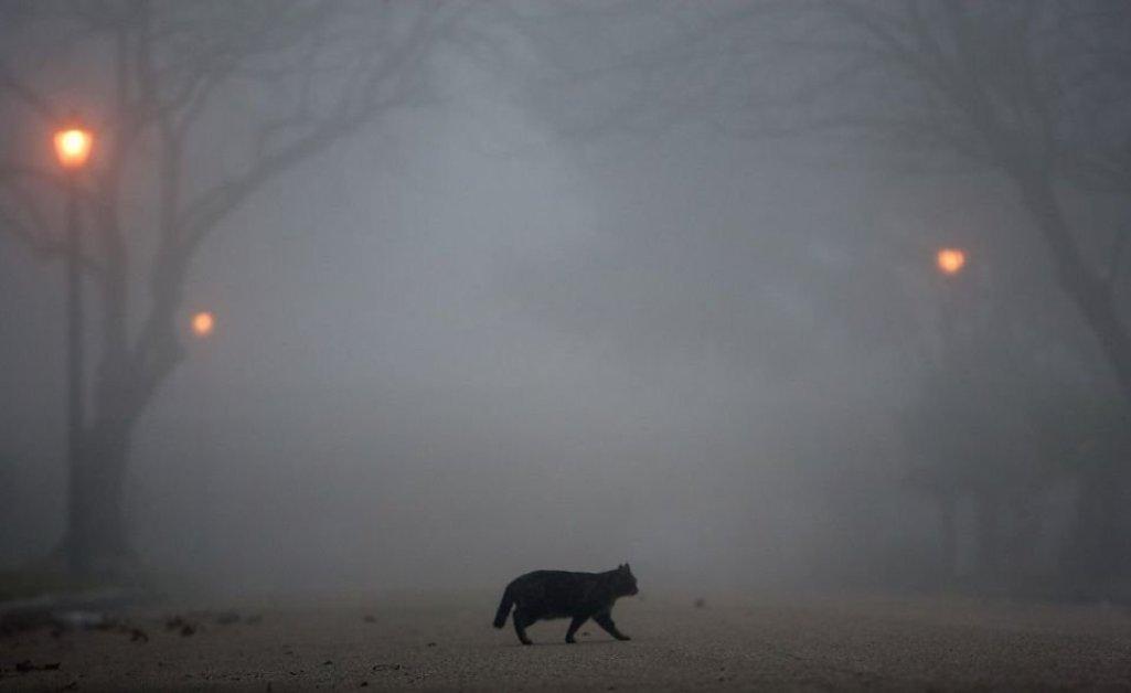 В столицеРФ  объявлено о стремительном  ухудшении погоды: надвигаются гроза иград
