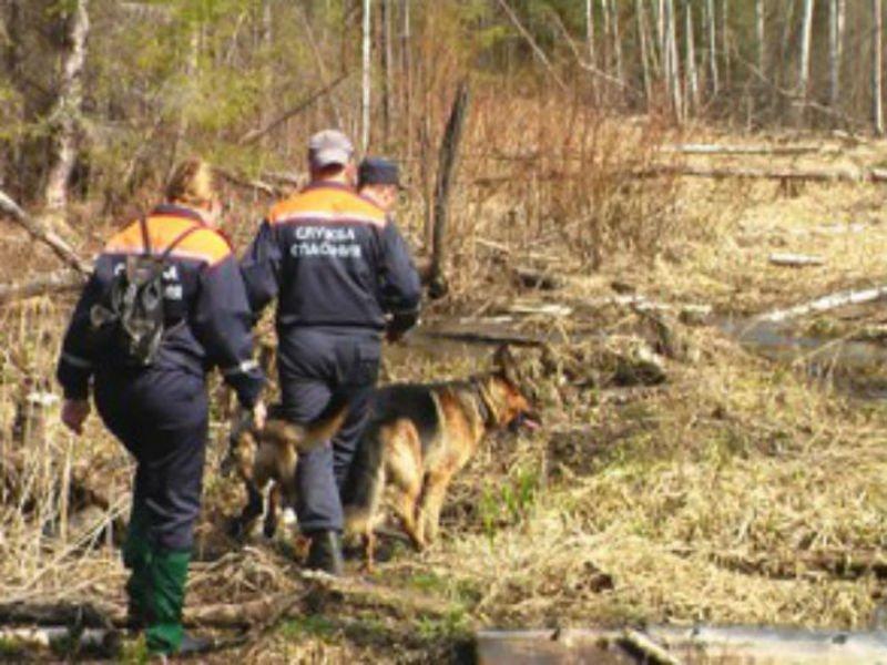 Под Липецком отыскали вещи пропавшего 3-х летнего ребенка