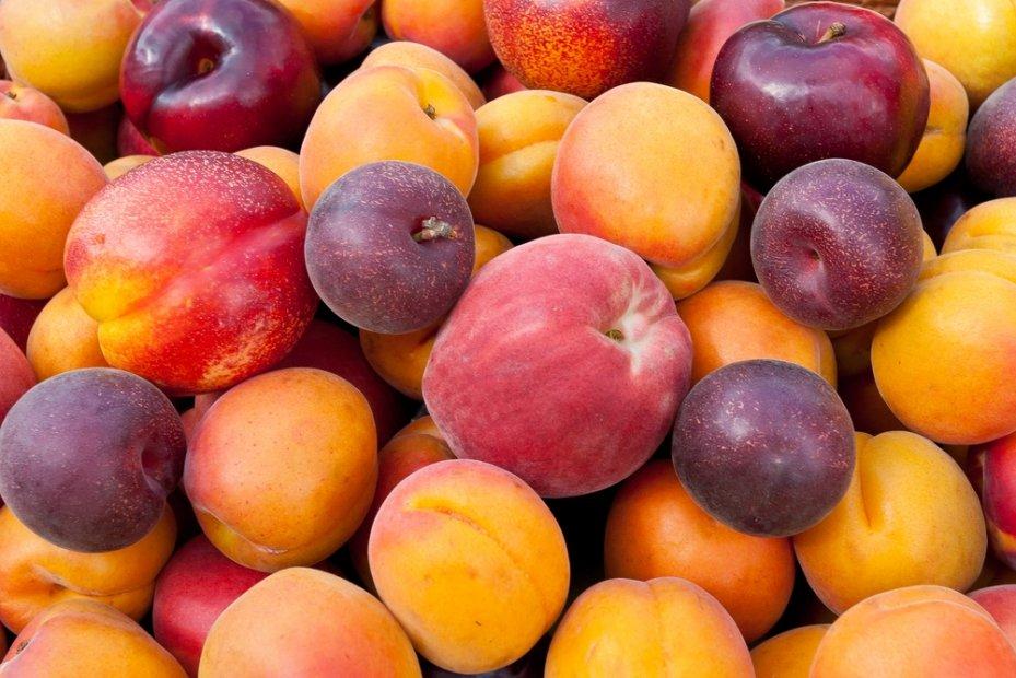 Ученые: Яблоки иабрикосы могут посодействовать вборьбе сраковыми болезнями