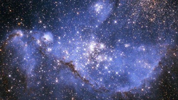 """Скоро в космосе зародится новая жизнь: Одноклеточная бактерия или """"белковая"""" субстанция"""