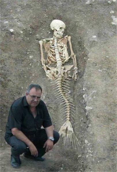 Ученые в Египте нашли скелет русалки