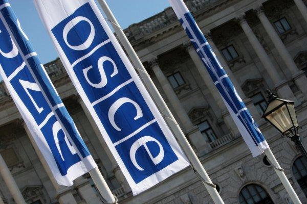 Россия представит свой документ, если ОБСЕ примет резолюцию по Крыму
