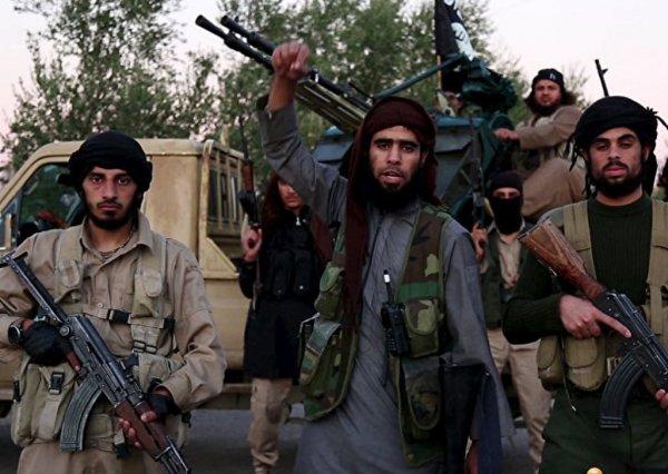 СМИ узнали о заработках террористов ИГИЛ
