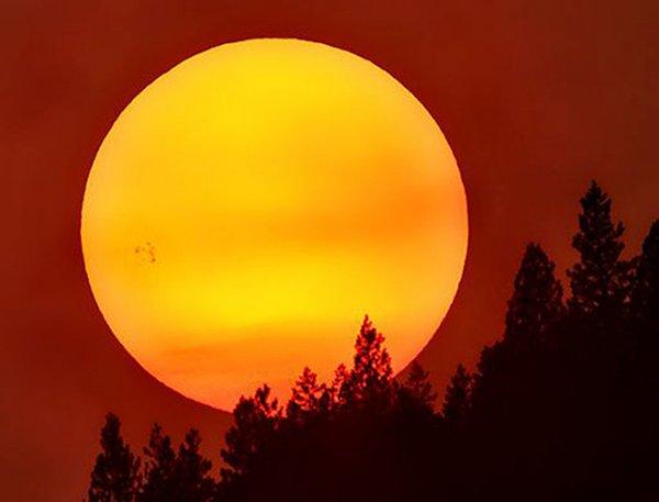 Обсерватория NASA запечатлела гигантское пятно на Солнце