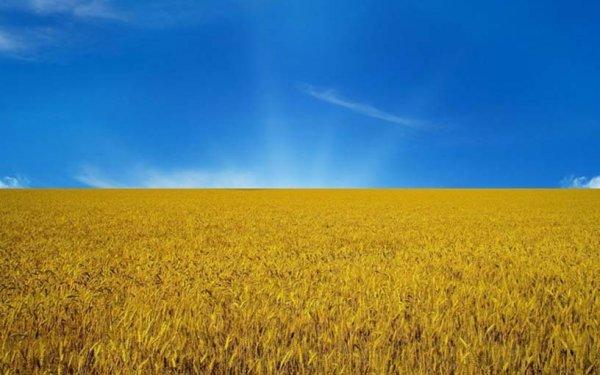 ЕС одобрил торговые льготы для Украины на три года