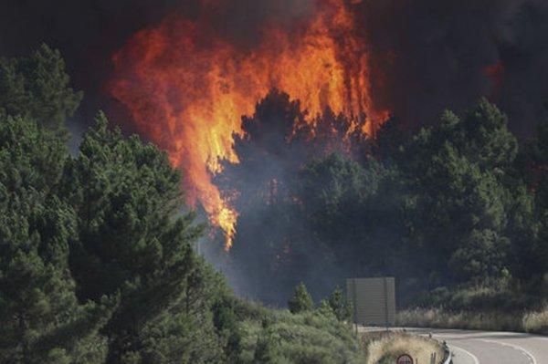 В Черногории по причине пожара эвакуировали свыше 300 человек