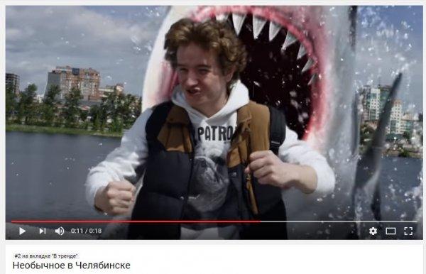 Челябинская акула, якобы съевшая парня, покорила YouTube