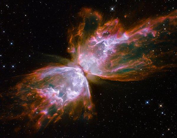 Ученые сообщили, что часть звезд погибает от насилия