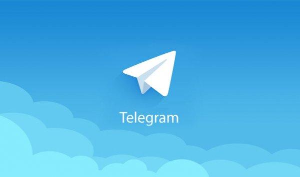 Telegram обзавелся функцией самоуничтожения фото и видео