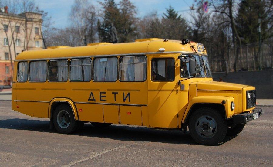 ВОмской области выделят 75 млн. руб. назакупку 43 школьных автобусов