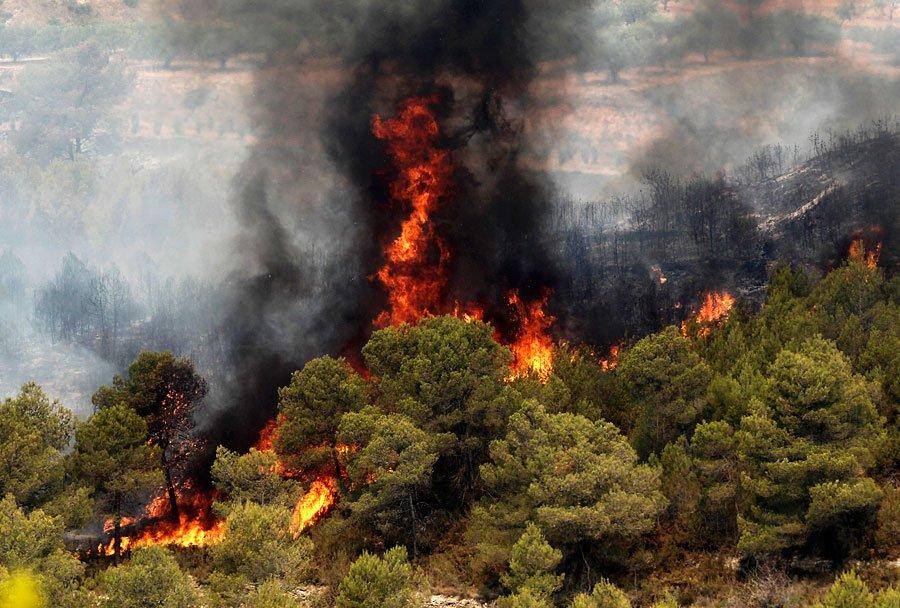 Три человека погибли в итоге лесных пожаров вИталии