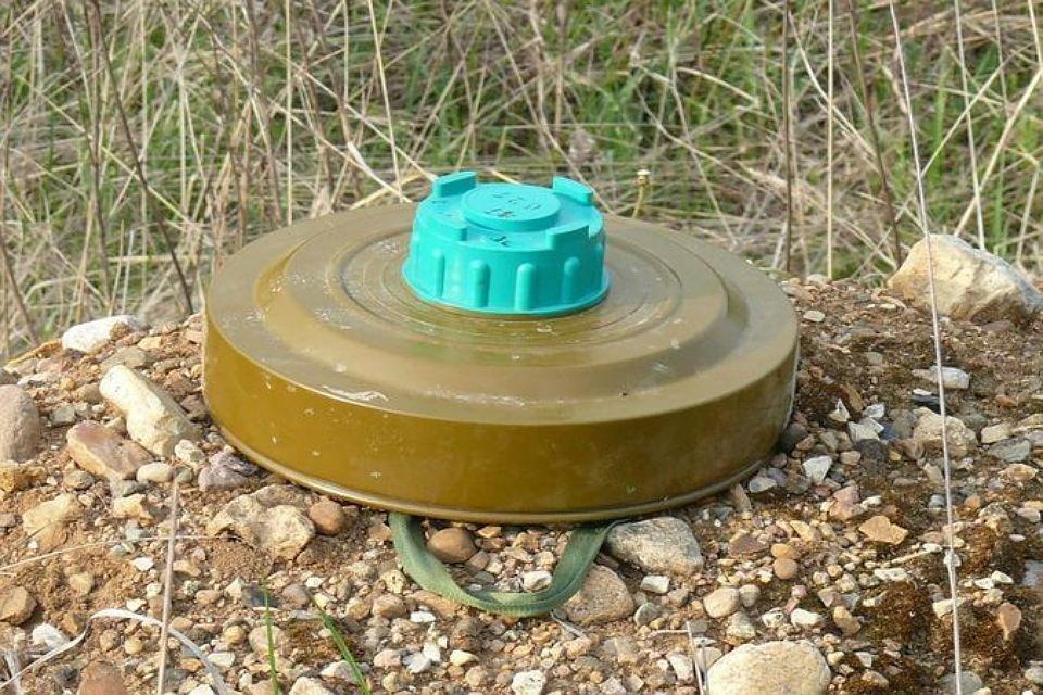 Удетсада вХабаровске отыскали  учебные мины ипорох