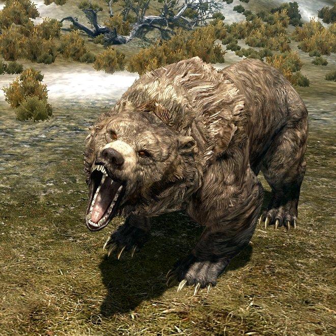 ВКоми отыскали кладбище старинных пещерных медведей