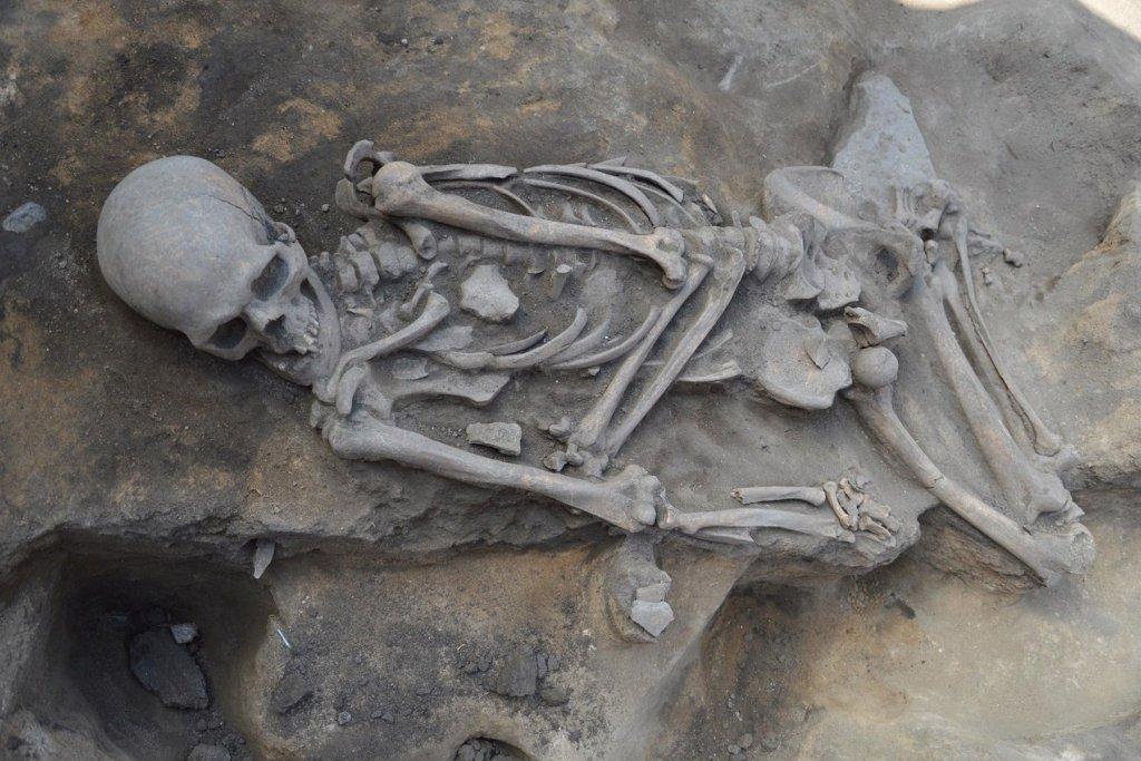 Захоронение мужчины эпохи бронзы случайно отыскали наАркаиме