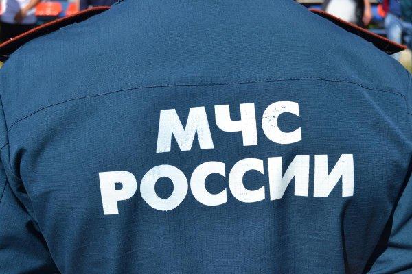 В Москве спасатели вытащили из пруда пьяного тонущего