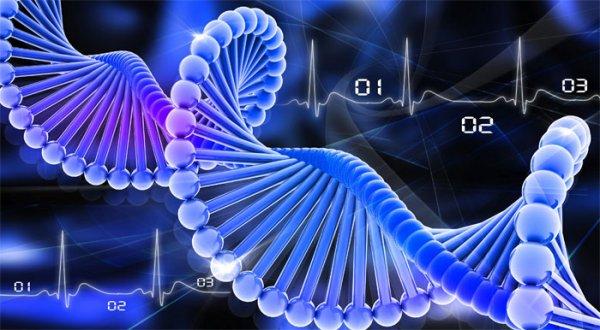 Компания Swift представляет метод подготовки геномных библиотек секвенирования