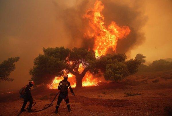 Греция попросит у ЕС помощи в борьбе с лесными пожарами