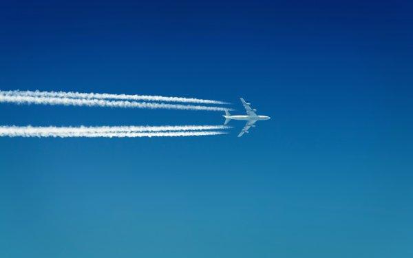 Ирландский самолет экстренно сел в Бордо из-за дебоширов а борту