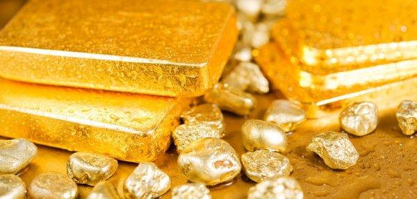 В России разработали способ добычи золота с помощью бактерий