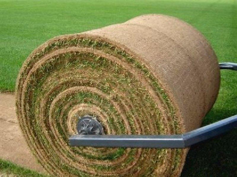 ВРостове наНансена засеют газон стоимостью 8,1 млн. руб.