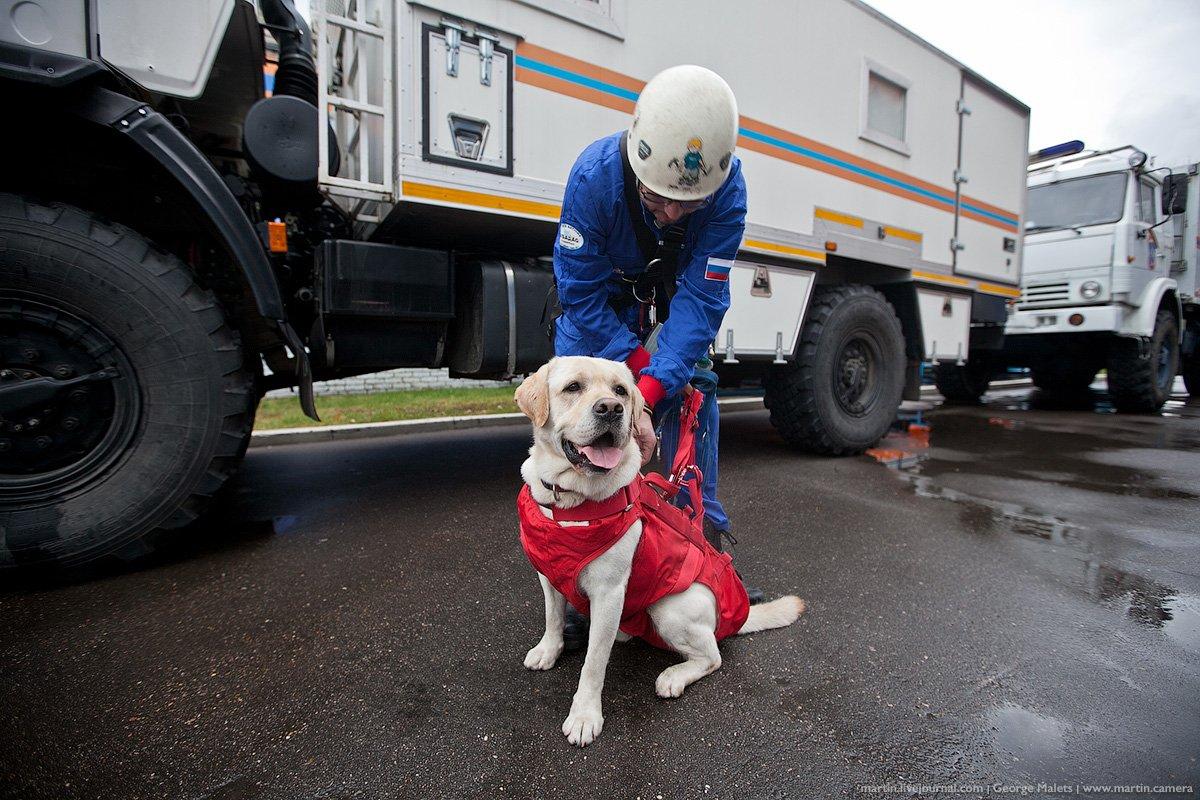 В столице России из-за угрозы взрывов эвакуировали девятьТЦ ивосемь гостиниц