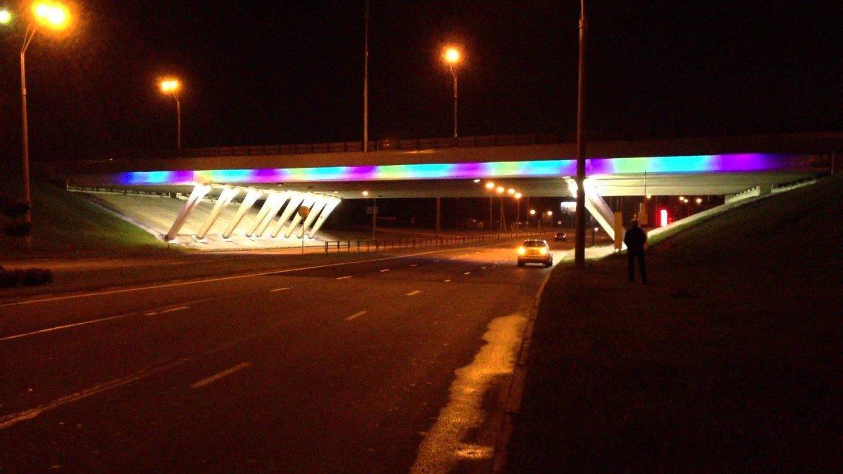 Заезд в столицу наКаширском шоссе украсили ландшафтной подсветкой