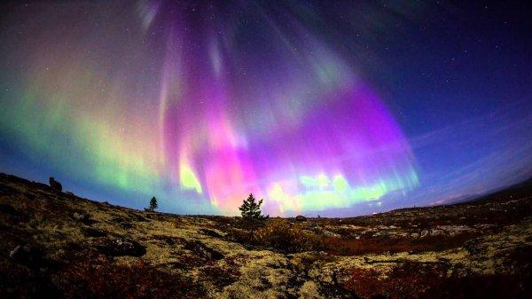 Жители Перми смогут наблюдать северное сияние этой ночью