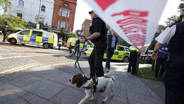 В метро Лондона сдетонировало самодельное взрывное устройство
