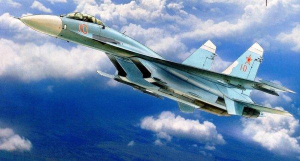 Президент авиасалона МАКС предупреждал погибшего в США пилота Су-27 об угрозе