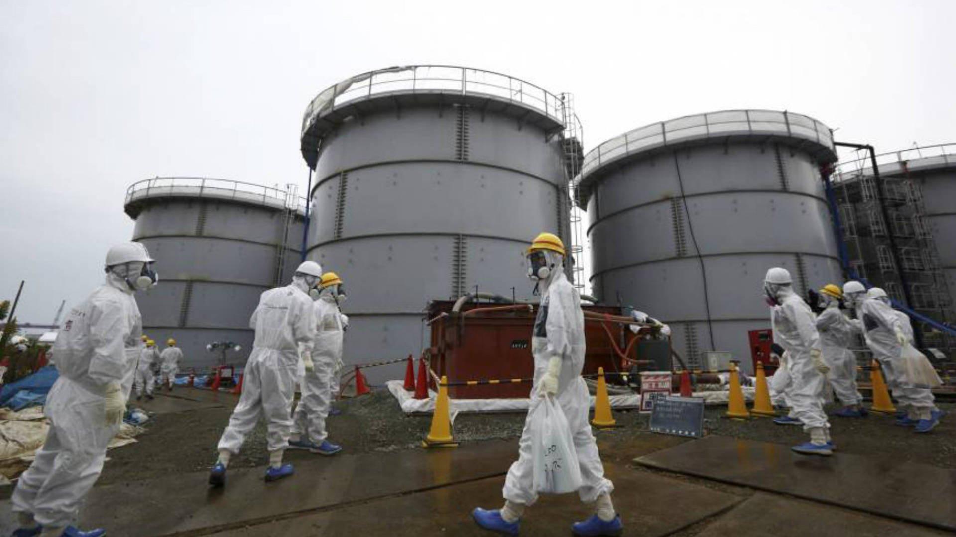 Реакторы крупнейшей вмире японской АЭС готовы кперезапуску
